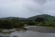 Guadalete-Barbate 2001