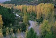 Ebro 2005
